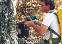 James Neve Working On A Tree